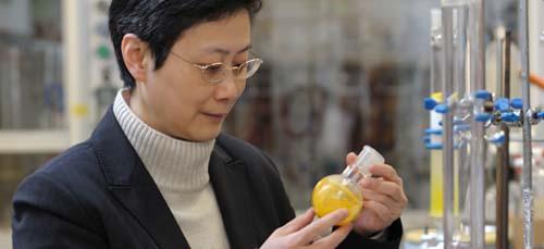 Professor Vivian Yam, Senior Research Fellow 2000, was named Laureate of the 13th L'Oreal-UNESCO Women in Science Awards in November 2010於千禧年獲頒裘槎優秀科研者獎的任詠華教授,再於2010年11月得到第十三屆 L'Oreal-UNESCO女科學家獎的殊榮。
